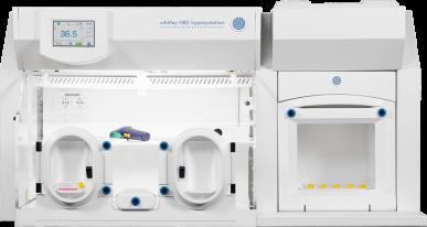 Whitley H85 Hypoxystation